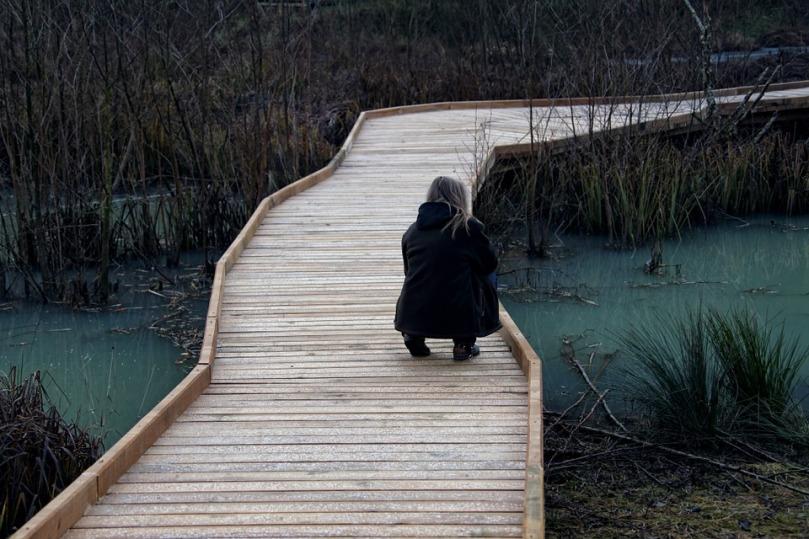 donna ponte1
